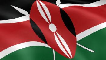 Оформление визы в Кению для россиян – проще оформить электронную на сайте посольства?