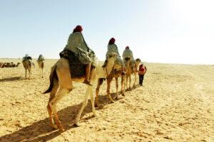 Туристы в Алжире