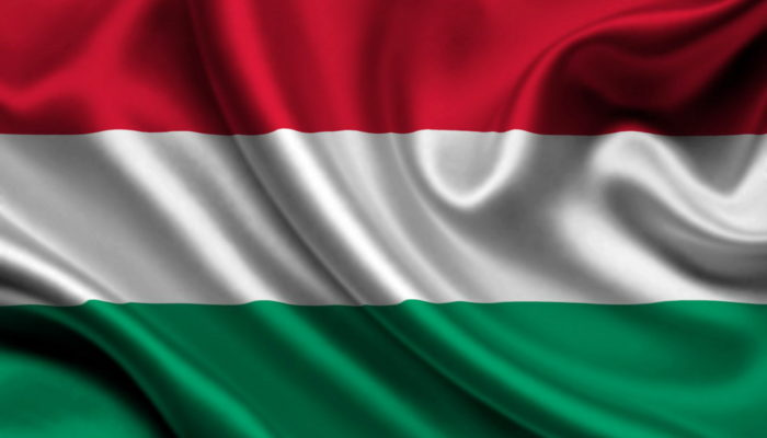 Виза в Венгрию – как россиянам оформить самостоятельно?