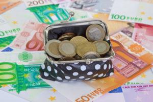 Кошелек и евро