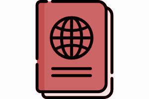 Как проверить готовность гражданства РФ онлайн в Игарке в 2019 году